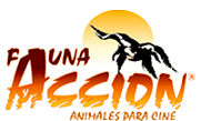 Fauna Accion 4